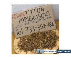 Tani tytoń papierosowy. Gratisy dla stałych klientów. Tytoń Camel, LM, Marlboro, Golden Virginia